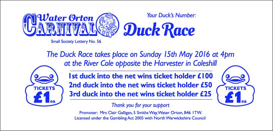 H0752-Duck Race Raffle Tickets sample